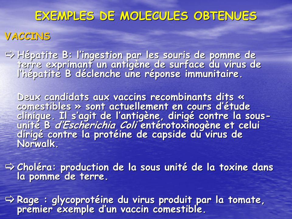 EXEMPLES DE MOLECULES OBTENUES VACCINS Hépatite B: lingestion par les souris de pomme de terre exprimant un antigène de surface du virus de lhépatite
