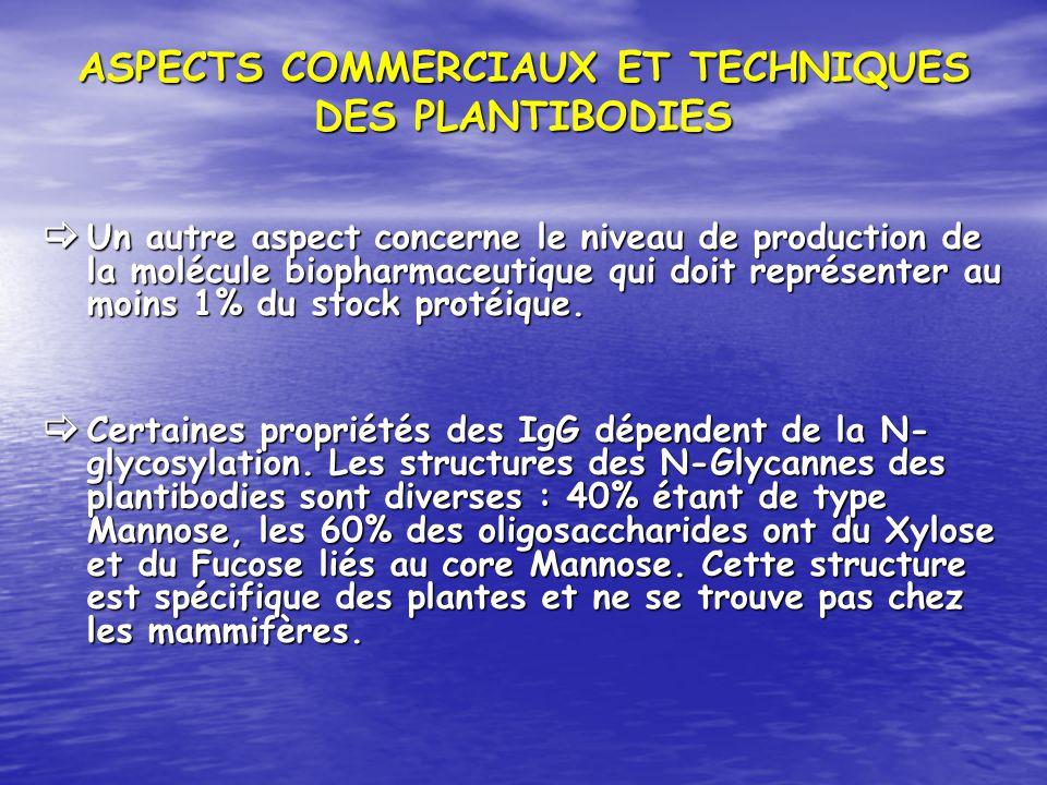 ASPECTS COMMERCIAUX ET TECHNIQUES DES PLANTIBODIES Un autre aspect concerne le niveau de production de la molécule biopharmaceutique qui doit représen