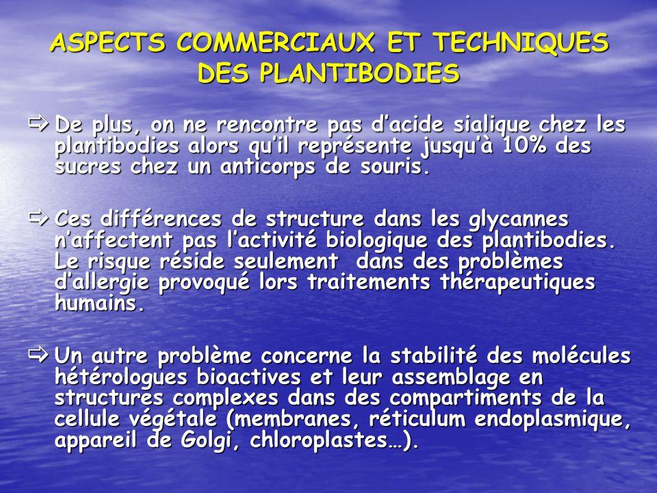 ASPECTS COMMERCIAUX ET TECHNIQUES DES PLANTIBODIES De plus, on ne rencontre pas dacide sialique chez les plantibodies alors quil représente jusquà 10%