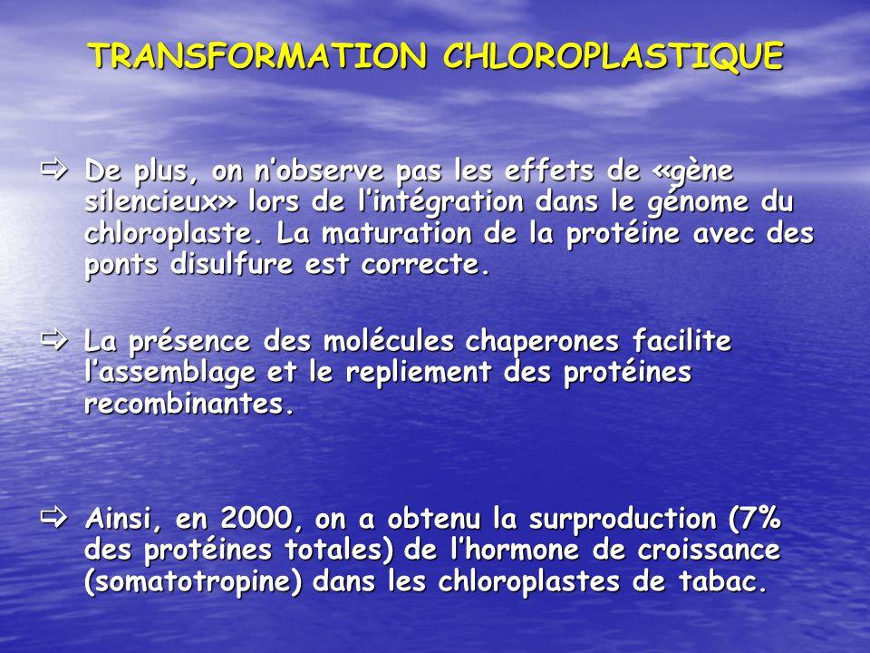 TRANSFORMATION CHLOROPLASTIQUE De plus, on nobserve pas les effets de «gène silencieux» lors de lintégration dans le génome du chloroplaste. La matura