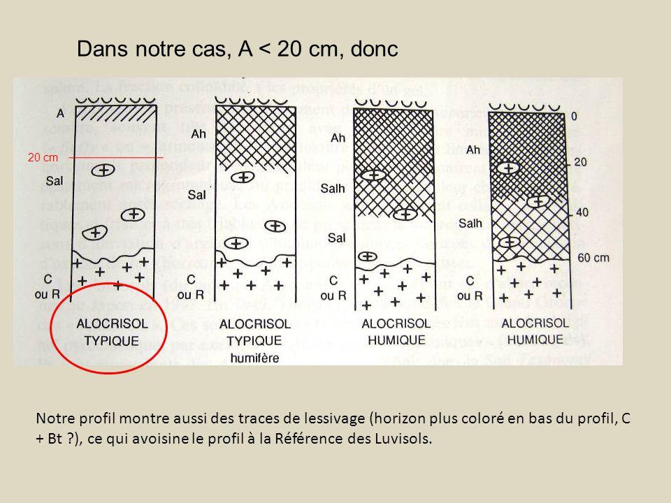 Dans notre cas, A < 20 cm, donc 20 cm Notre profil montre aussi des traces de lessivage (horizon plus coloré en bas du profil, C + Bt ?), ce qui avois
