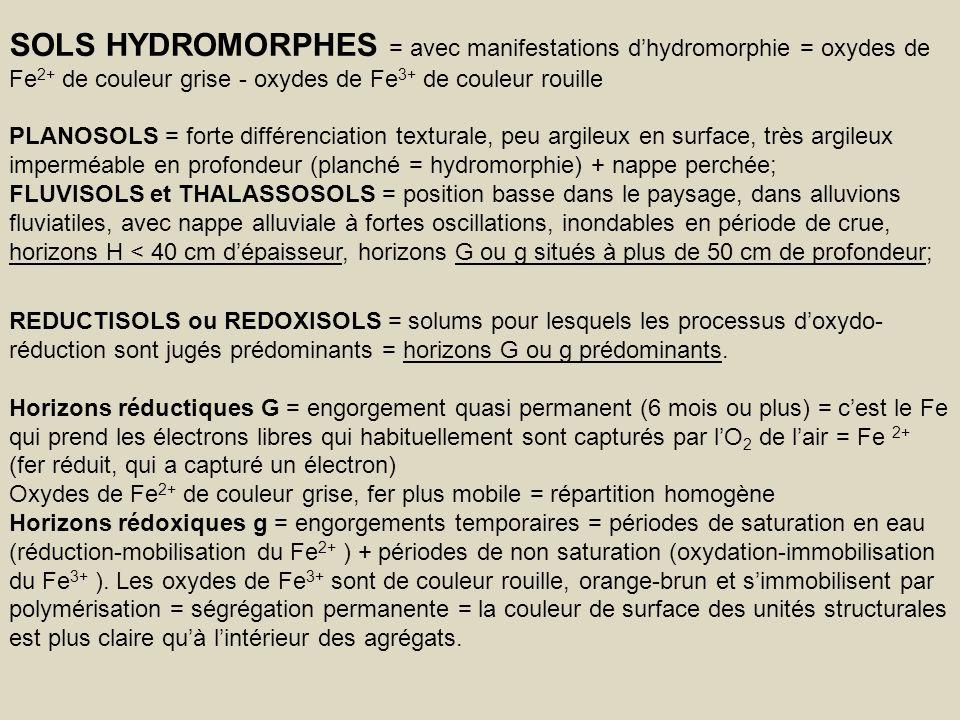 SOLS HYDROMORPHES = avec manifestations dhydromorphie = oxydes de Fe 2+ de couleur grise - oxydes de Fe 3+ de couleur rouille PLANOSOLS = forte différ