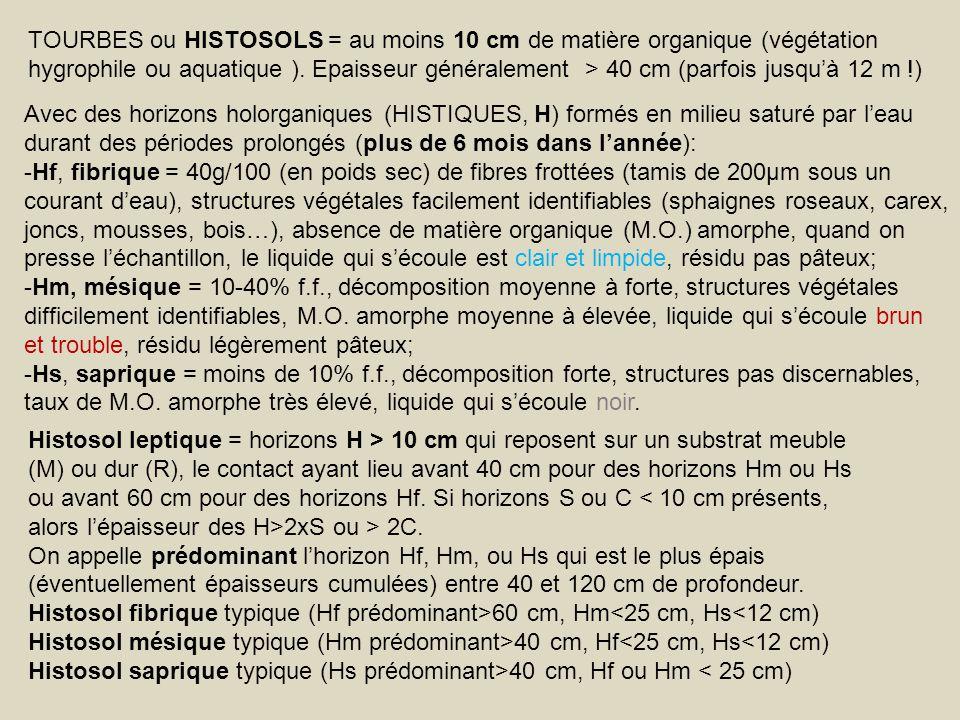 TOURBES ou HISTOSOLS = au moins 10 cm de matière organique (végétation hygrophile ou aquatique ). Epaisseur généralement > 40 cm (parfois jusquà 12 m