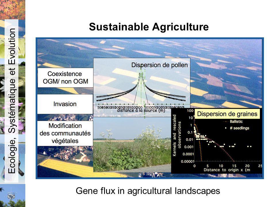Sustainable Agriculture Gene flux in agricultural landscapes Ecologie, Systématique et Evolution