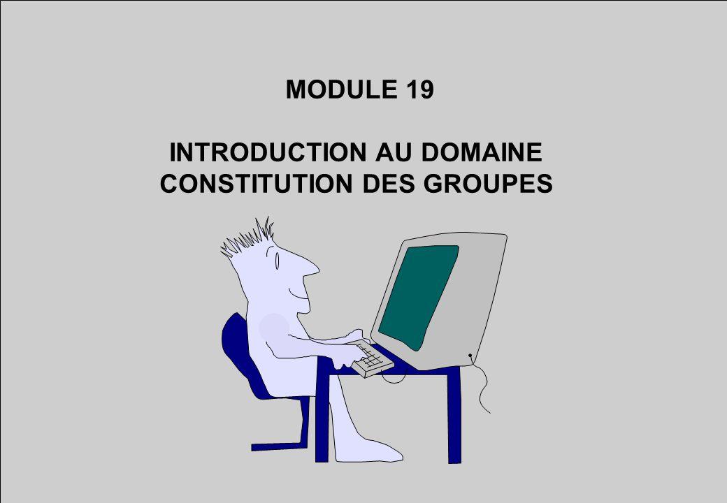 MODULE 19 INTRODUCTION AU DOMAINE CONSTITUTION DES GROUPES