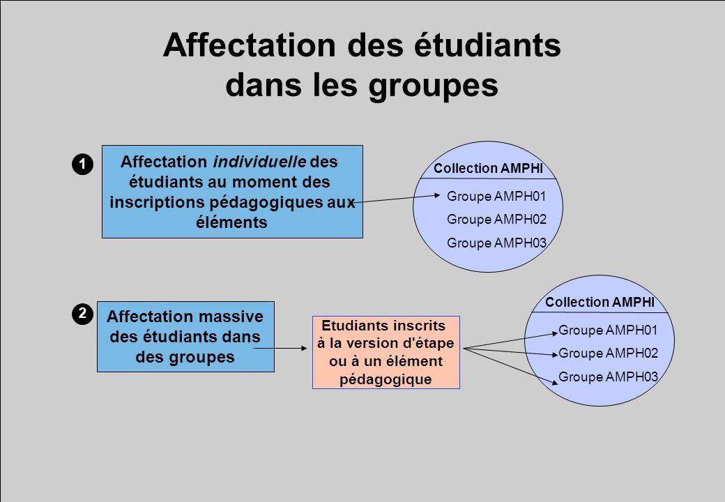 Affectation des étudiants dans les groupes Collection AMPHI Groupe AMPH01 Groupe AMPH02 Groupe AMPH03 Etudiants inscrits à la version d'étape ou à un