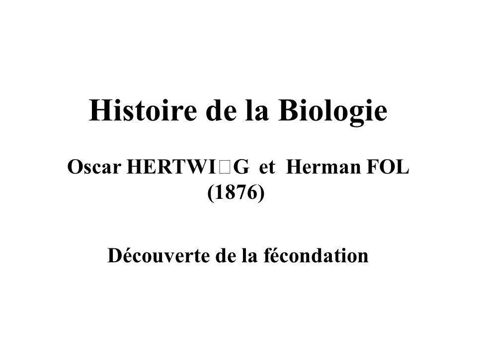 Histoire de la Biologie Oscar HERTWIG et Herman FOL (1876) Découverte de la fécondation