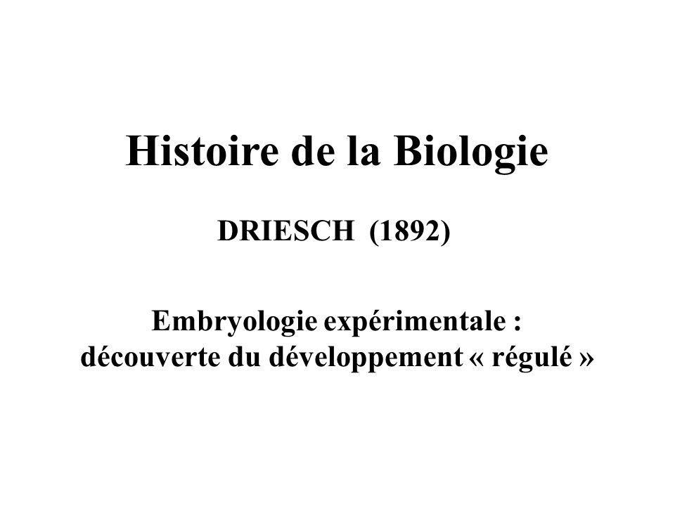 Histoire de la Biologie DRIESCH (1892) Embryologie expérimentale : découverte du développement « régulé »