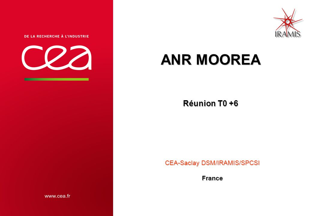 ANR MOOREA Réunion T0 +6 CEA-Saclay DSM/IRAMIS/SPCSI France