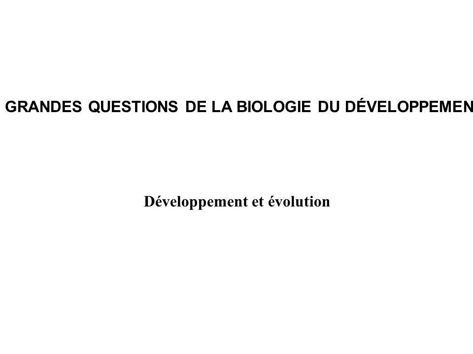 GRANDES QUESTIONS DE LA BIOLOGIE DU DÉVELOPPEMENT Développement et évolution