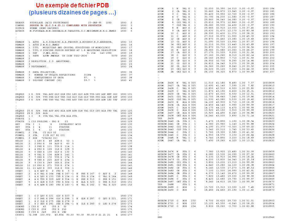 Un exemple de fichier PDB (plusieurs dizaines de pages …)