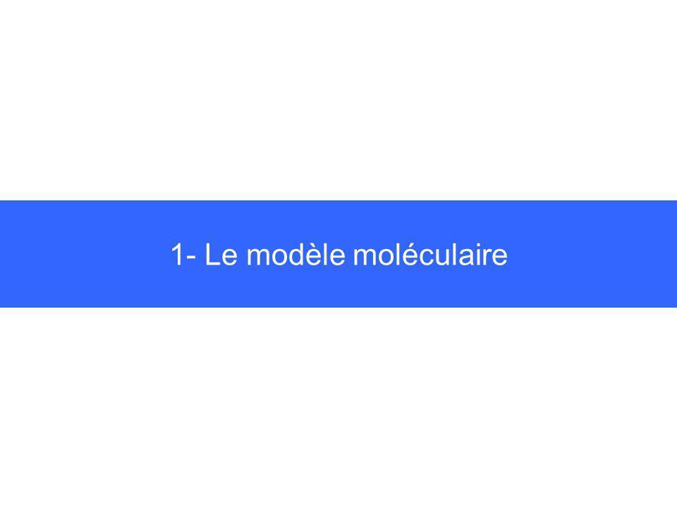 1- Le modèle moléculaire