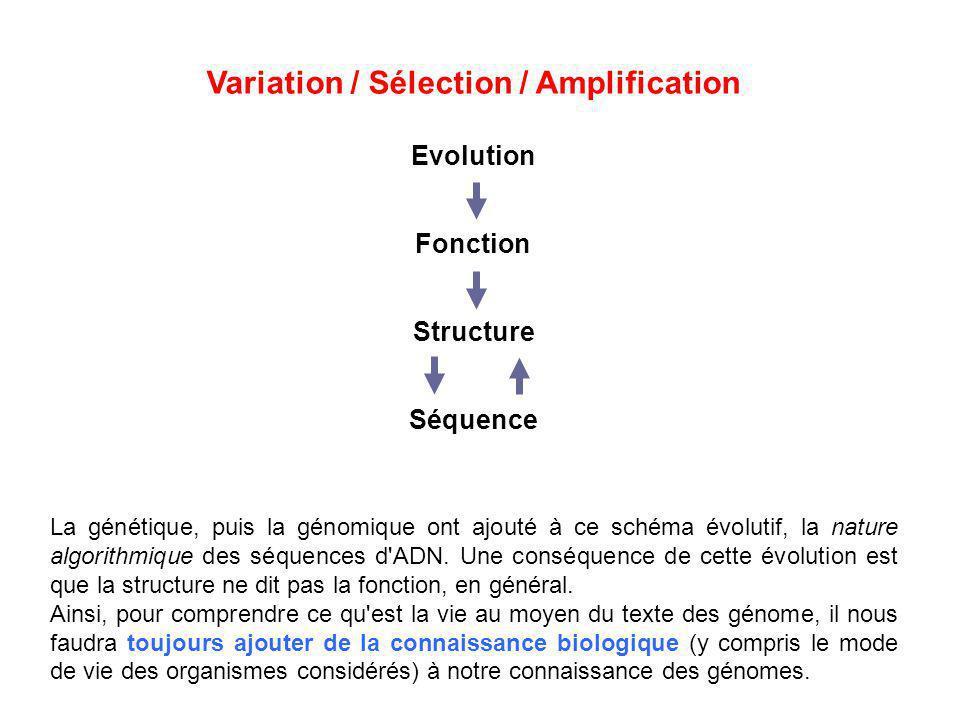 Variation / Sélection / Amplification Evolution Fonction Structure Séquence La génétique, puis la génomique ont ajouté à ce schéma évolutif, la nature