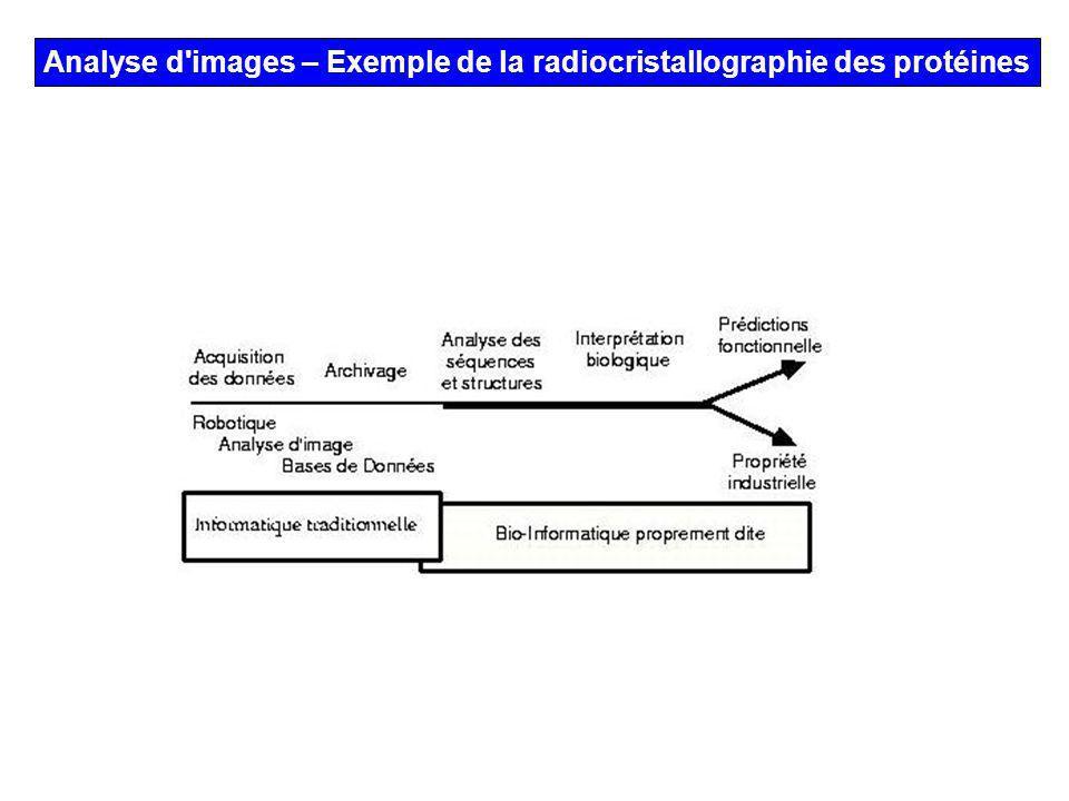Analyse d'images – Exemple de la radiocristallographie des protéines