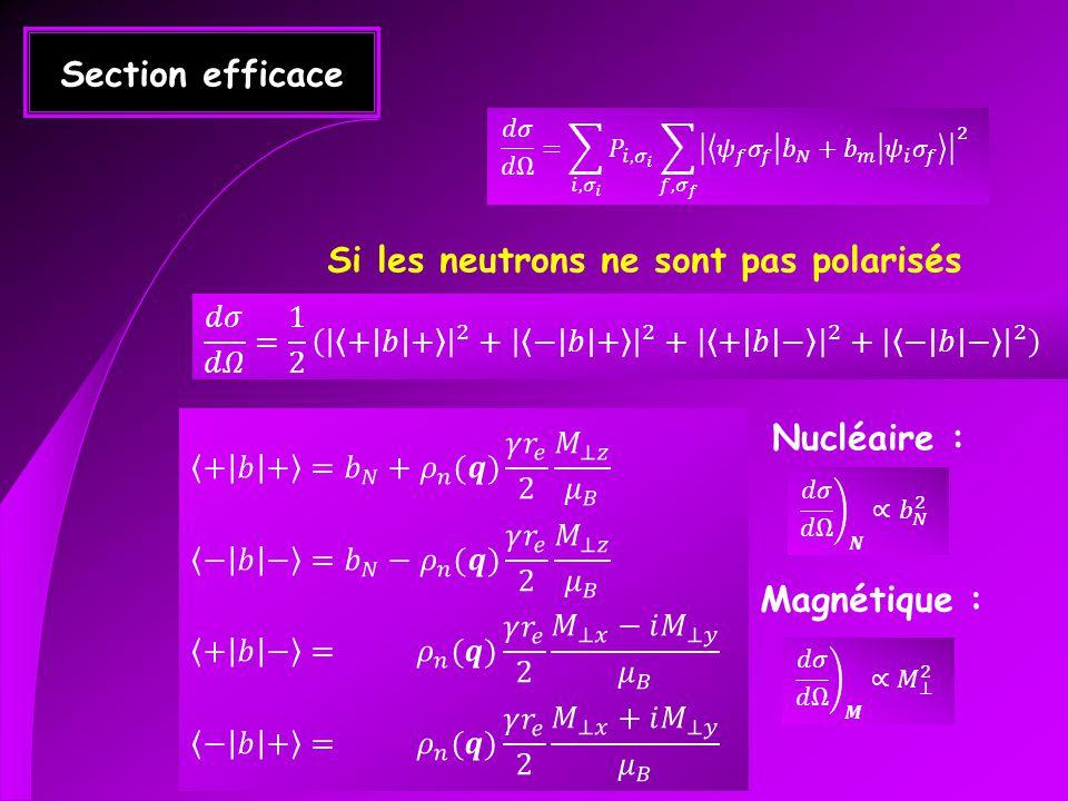 Section efficace Si les neutrons ne sont pas polarisés Nucléaire : Magnétique :