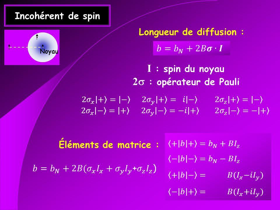 Incohérent de spin Longueur de diffusion : I : spin du noyau 2 : opérateur de Pauli Éléments de matrice : Noyau