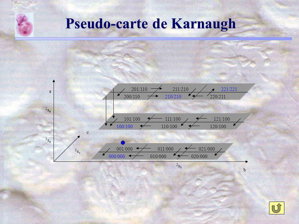 c b a 000/000010/000020/000 001/000011/000021/000 110/100100/100120/100 101/100111/100121/100 200/110210/210220/211 201/110211/210221/221 2sb2sb 1sc1sc 1sa1sa 2sa2sa Pseudo-carte de Karnaugh