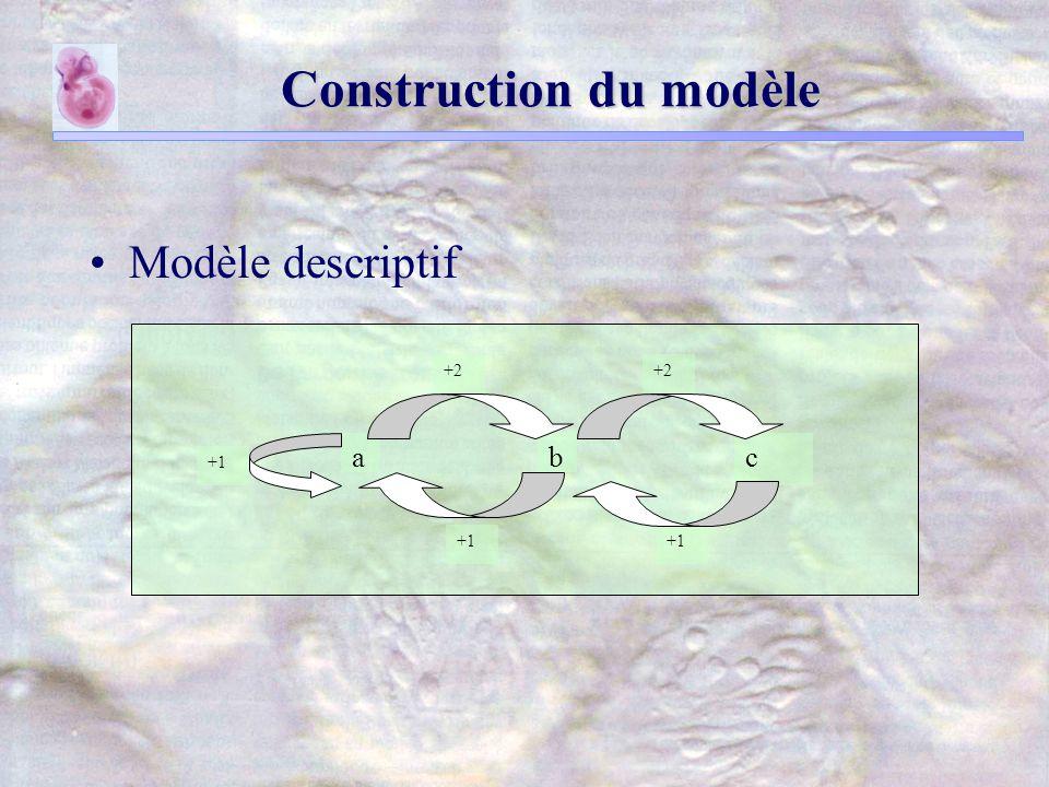 Construction du modèle Modèle descriptif +2 cba +1