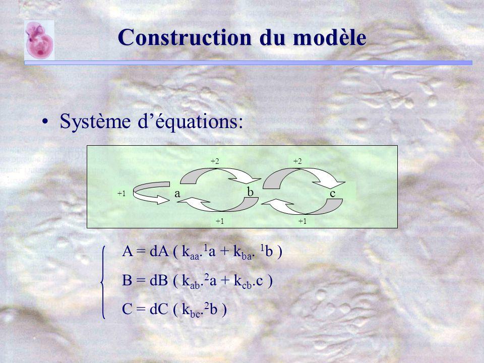 Construction du modèle Système déquations: A = dA ( k aa.