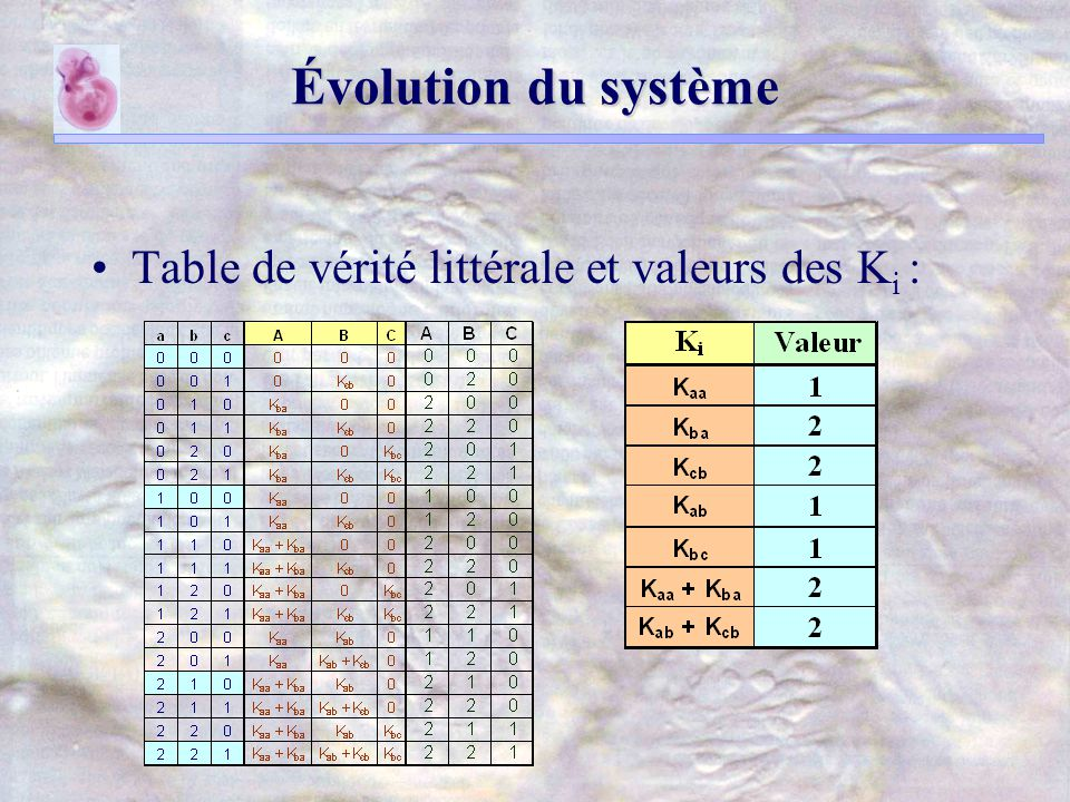 Évolution du système Table de vérité littérale et valeurs des K i :