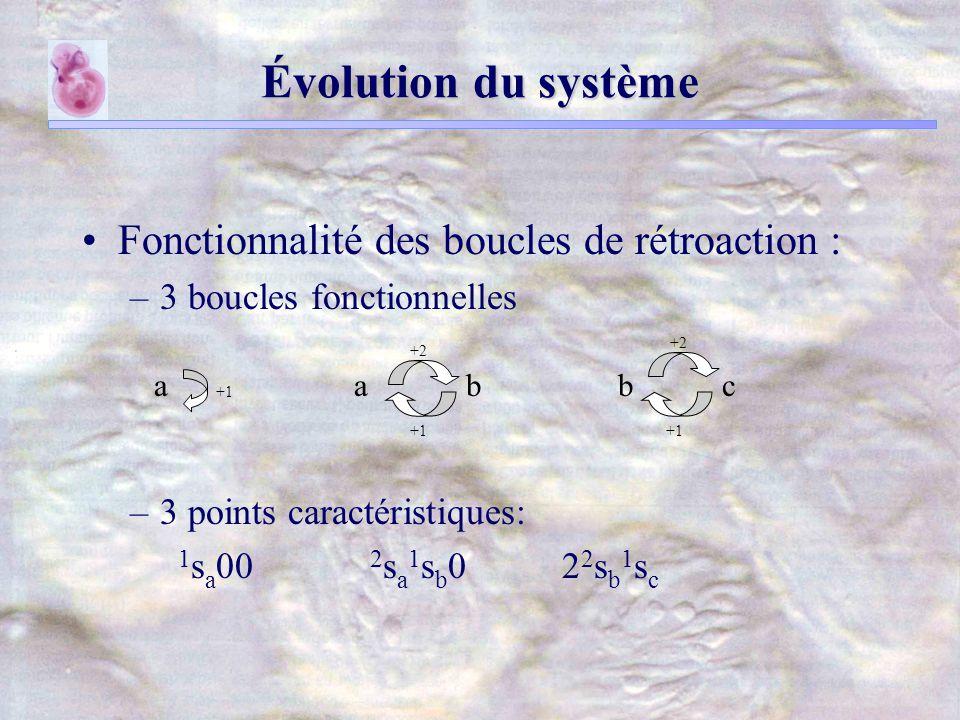 Évolution du système Fonctionnalité des boucles de rétroaction : –3 boucles fonctionnelles –3 points caractéristiques: 1 s a 00 2 s a 1 s b 0 2 2 s b 1 s c +1 a +2 ab +1 +2 bc