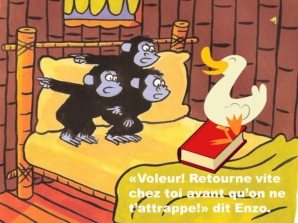 «Il est là, dans le lit!» Les trois singes vont enfin pouvoir récupérer leur livre préféré.