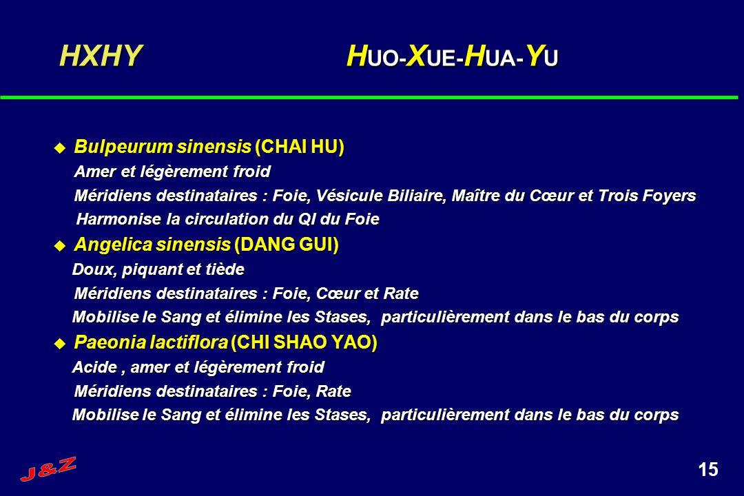 15 HXHY H UO- X UE- H UA- Y U Bulpeurum sinensis (CHAI HU) Bulpeurum sinensis (CHAI HU) Amer et légèrement froid Méridiens destinataires : Foie, Vésic