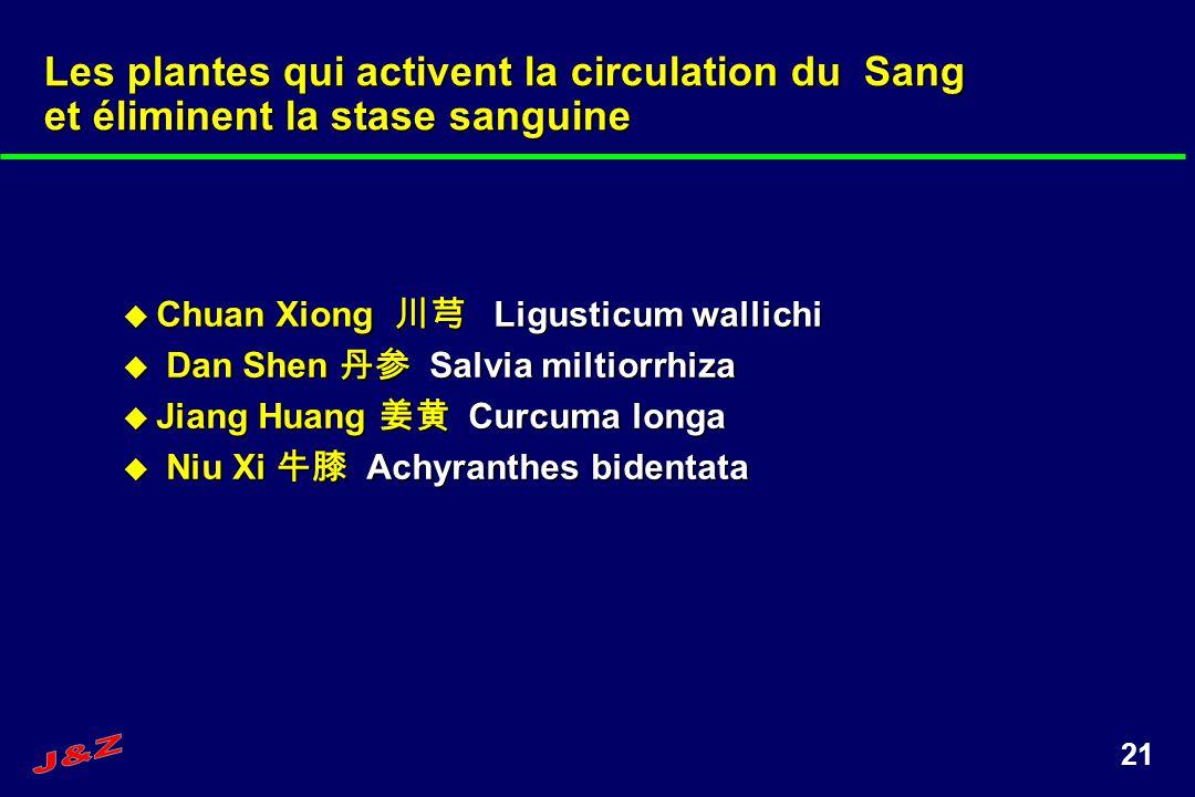 21 Chuan Xiong Ligusticum wallichi Chuan Xiong Ligusticum wallichi Dan Shen Salvia miltiorrhiza Dan Shen Salvia miltiorrhiza Jiang Huang Curcuma longa