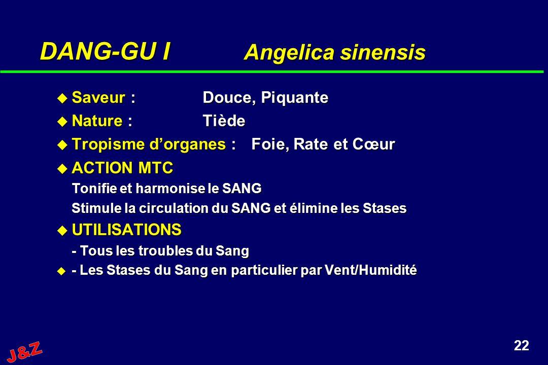 22 DANG-GU I Angelica sinensis Saveur :Douce, Piquante Saveur :Douce, Piquante Nature :Tiède Nature :Tiède Tropisme dorganes :Foie, Rate et Cœur Tropi