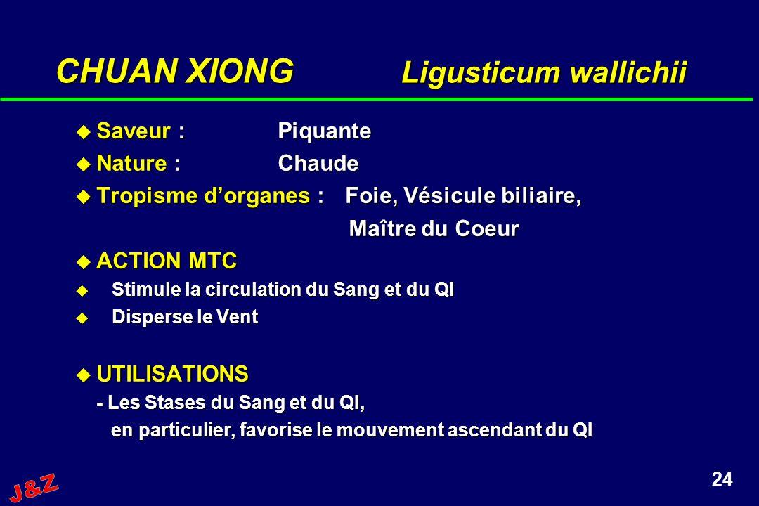 24 CHUAN XIONG Ligusticum wallichii Saveur :Piquante Saveur :Piquante Nature :Chaude Nature :Chaude Tropisme dorganes :Foie, Vésicule biliaire, Tropis