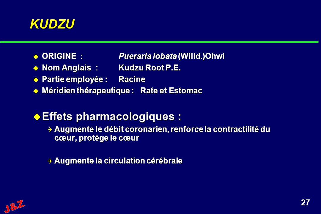 27 KUDZU ORIGINE Pueraria lobata (Willd.)Ohwi ORIGINE Pueraria lobata (Willd.)Ohwi Nom Anglais Kudzu Root P.E. Nom Anglais Kudzu Root P.E. Partie empl