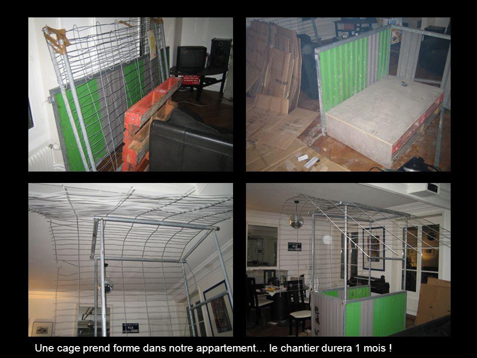 Une cage prend forme dans notre appartement… le chantier durera 1 mois !