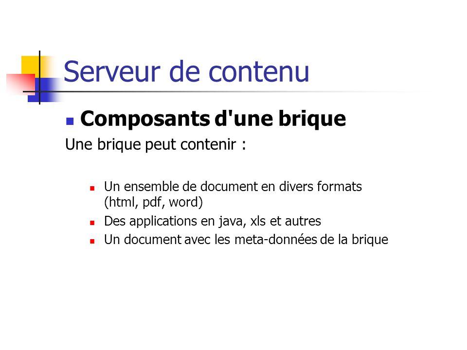 Serveur de contenu Composants d'une brique Une brique peut contenir : Un ensemble de document en divers formats (html, pdf, word) Des applications en