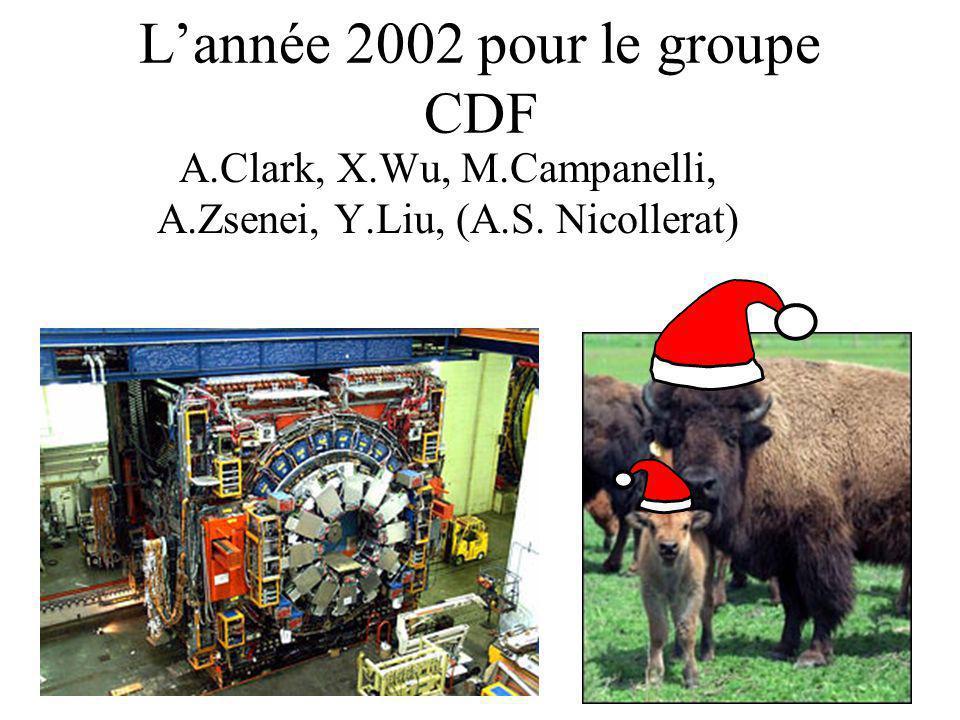 Lannée 2002 pour le groupe CDF A.Clark, X.Wu, M.Campanelli, A.Zsenei, Y.Liu, (A.S. Nicollerat)