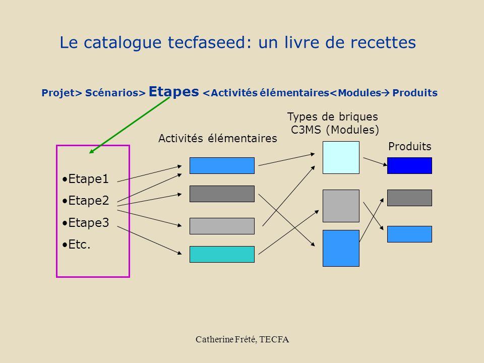 Catherine Frété, TECFA Le catalogue tecfaseed: un livre de recettes Etape1 Etape2 Etape3 Etc. Activités élémentaires Types de briques C3MS (Modules) P
