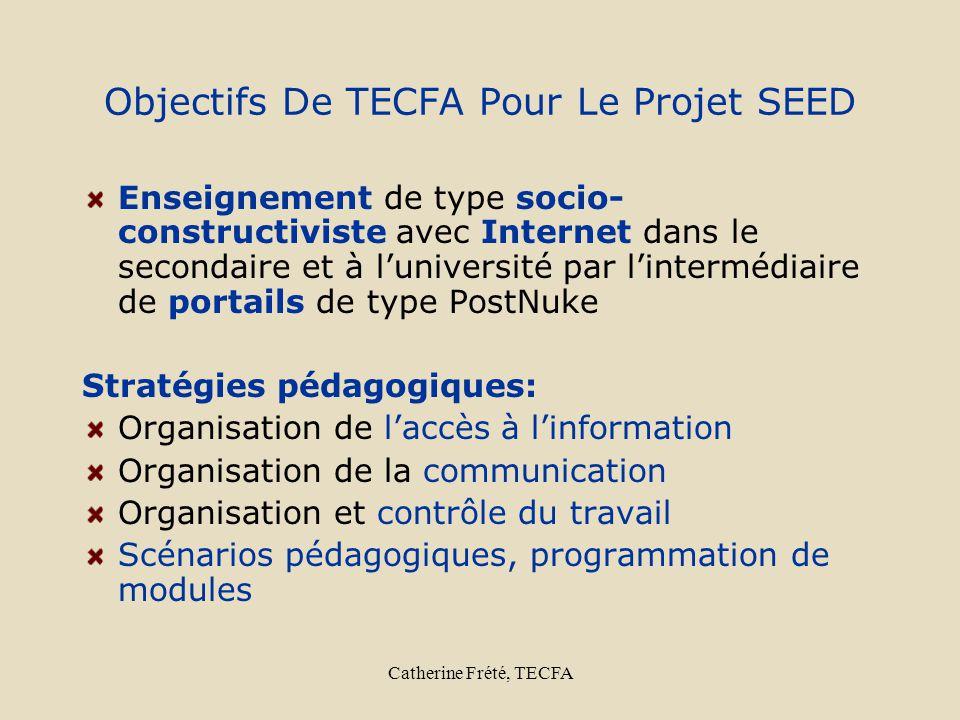 Catherine Frété, TECFA Objectifs De TECFA Pour Le Projet SEED Enseignement de type socio- constructiviste avec Internet dans le secondaire et à lunive