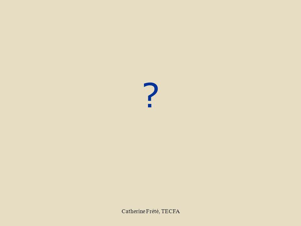 Catherine Frété, TECFA ?