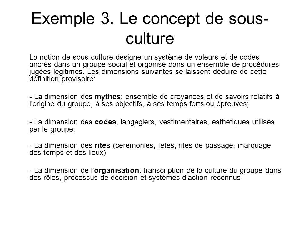 Exemple 3. Le concept de sous- culture La notion de sous-culture désigne un système de valeurs et de codes ancrés dans un groupe social et organisé da
