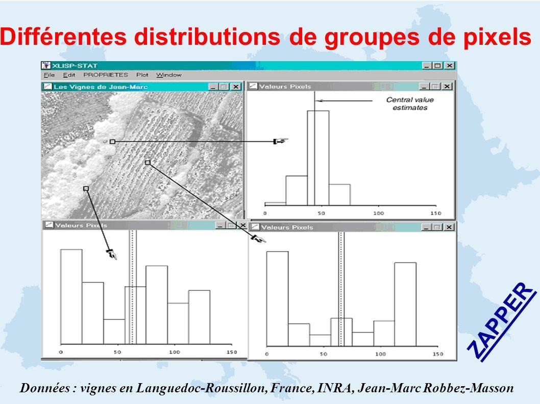 Différentes distributions de groupes de pixels Données : vignes en Languedoc-Roussillon, France, INRA, Jean-Marc Robbez-Masson ZAPPER