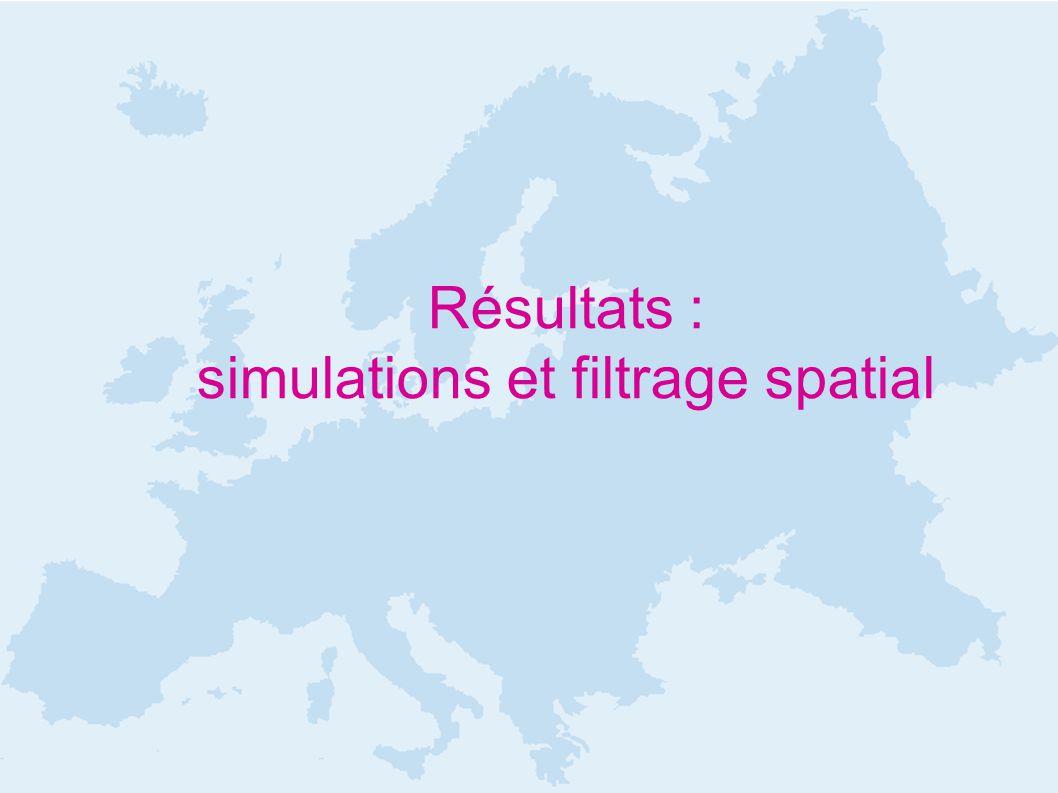 Résultats : simulations et filtrage spatial