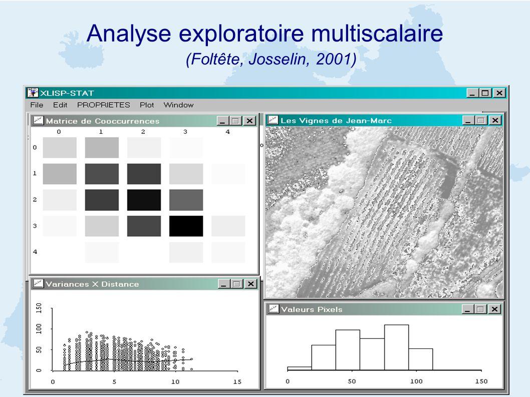 Analyse exploratoire multiscalaire (Foltête, Josselin, 2001)