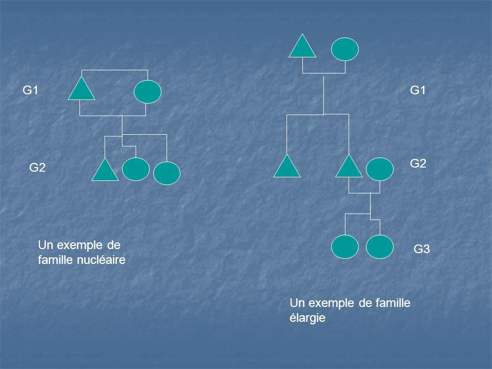 Un exemple de famille nucléaire Un exemple de famille élargie G1 G2 G1 G2 G3