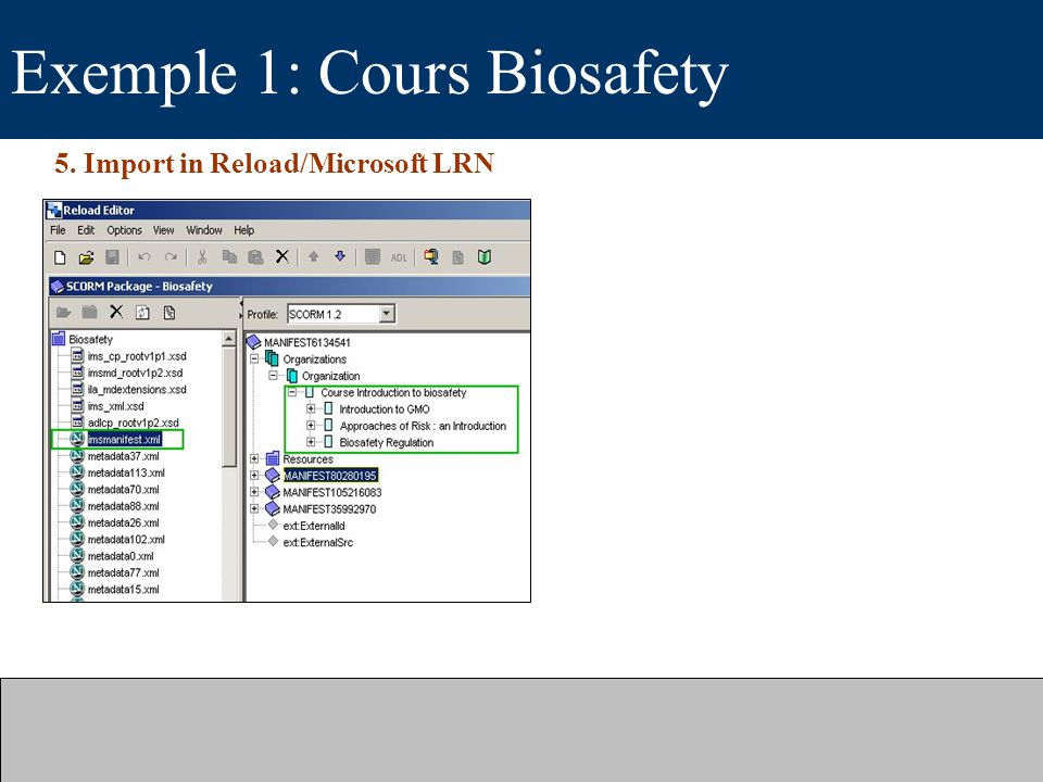 Exemple 1: Cours Biosafety 5. Import in Reload/Microsoft LRN