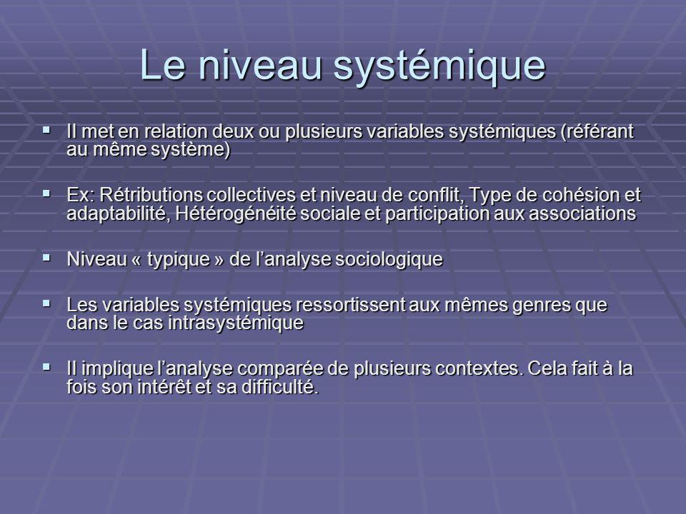 Le niveau systémique Il met en relation deux ou plusieurs variables systémiques (référant au même système) Il met en relation deux ou plusieurs variab