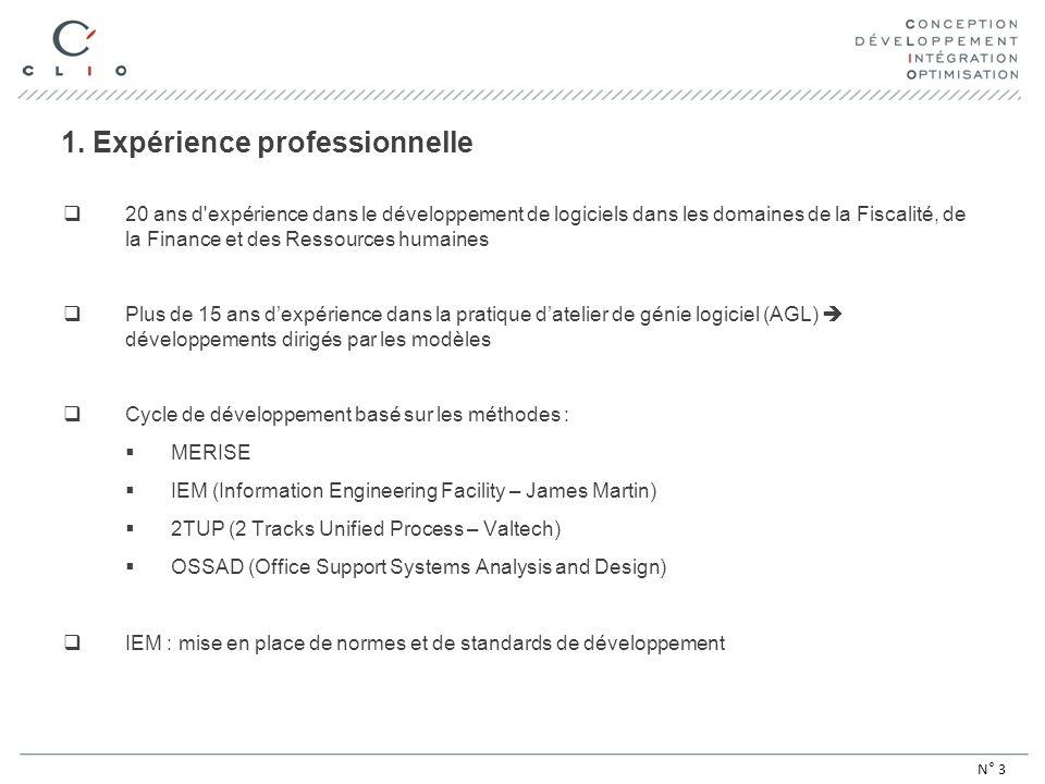 1. Expérience professionnelle 20 ans d'expérience dans le développement de logiciels dans les domaines de la Fiscalité, de la Finance et des Ressource