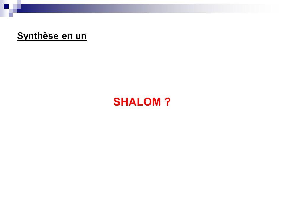 Synthèse en un SHALOM ?