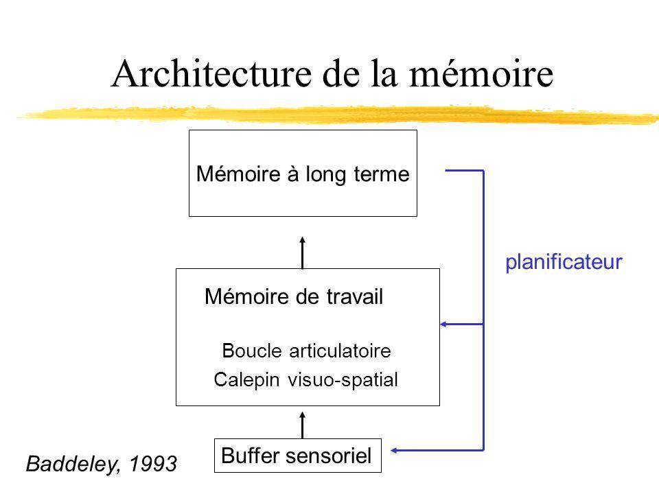 Architecture de la mémoire Buffer sensoriel Boucle articulatoire Calepin visuo-spatial Mémoire de travail Mémoire à long terme planificateur Baddeley, 1993