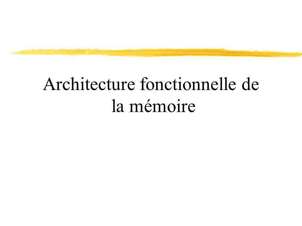Architecture fonctionnelle de la mémoire