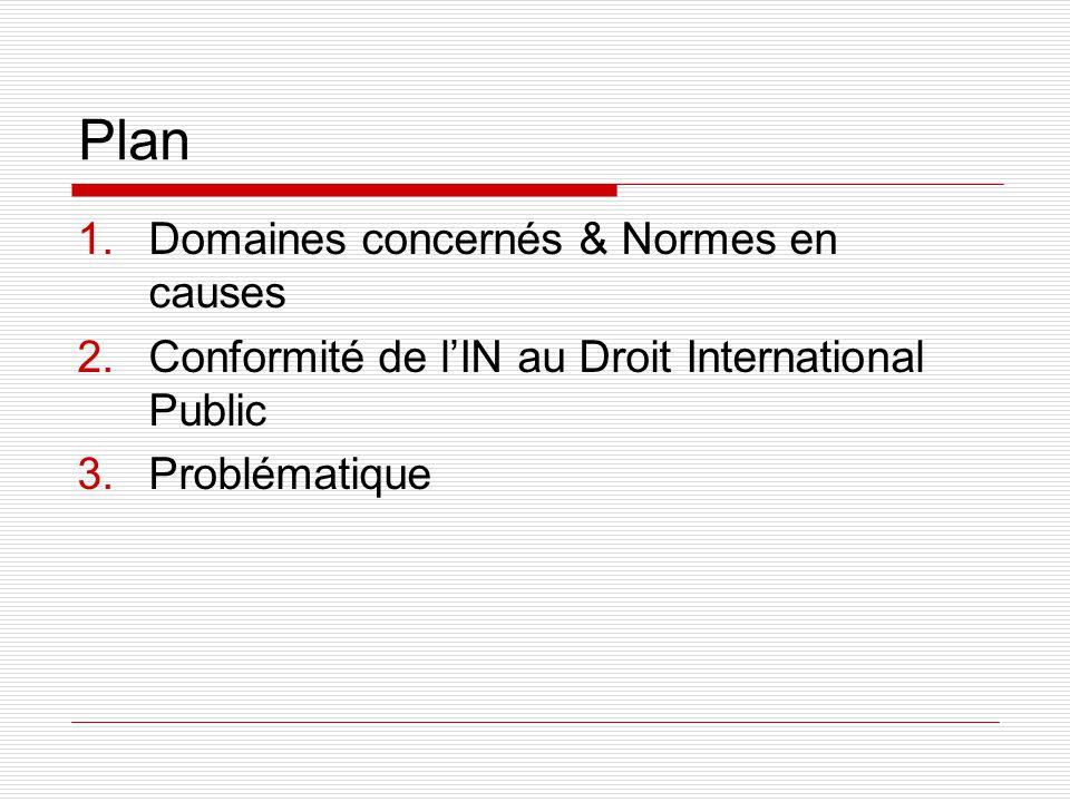 Plan 1.Domaines concernés & Normes en causes 2.Conformité de lIN au Droit International Public 3.Problématique