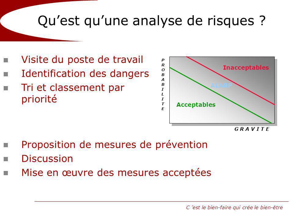 C est le bien-faire qui crée le bien-être Quest quune analyse de risques .